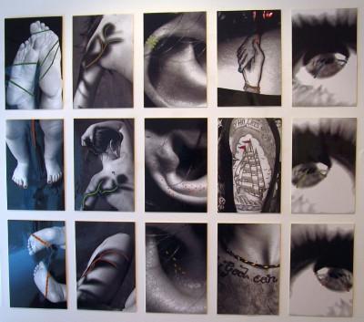 Julia Bachleitner, Sanja Brandl, Christina Heiß, Simona Perfeller, Conny Mayrhofer, Maria SteinmauerGroße Fotografien mit integrierten Brettchengewebe